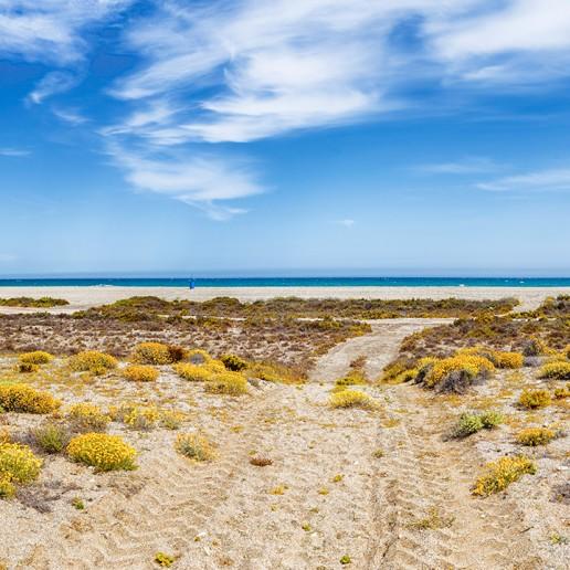 Paraje Natural de Punta Entinas-Sabinar